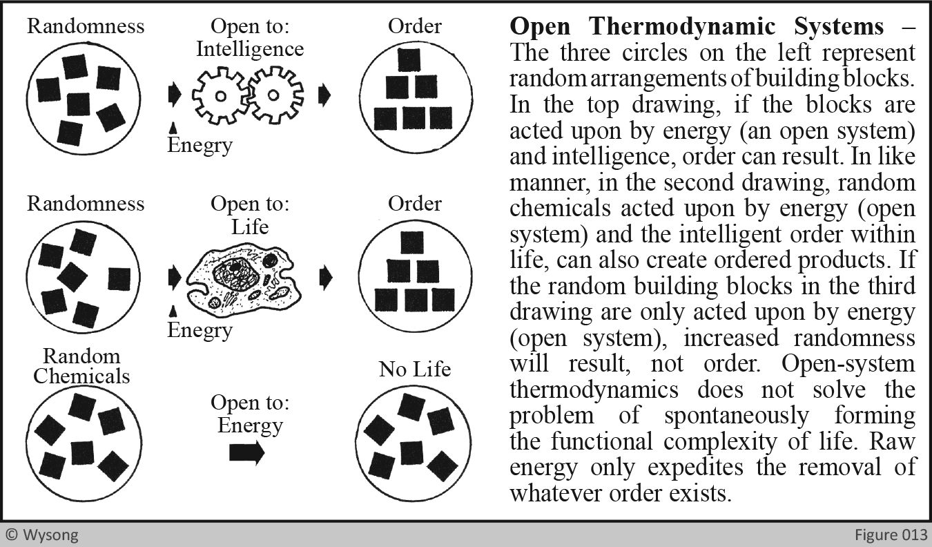 Open Thermodynamic Systems