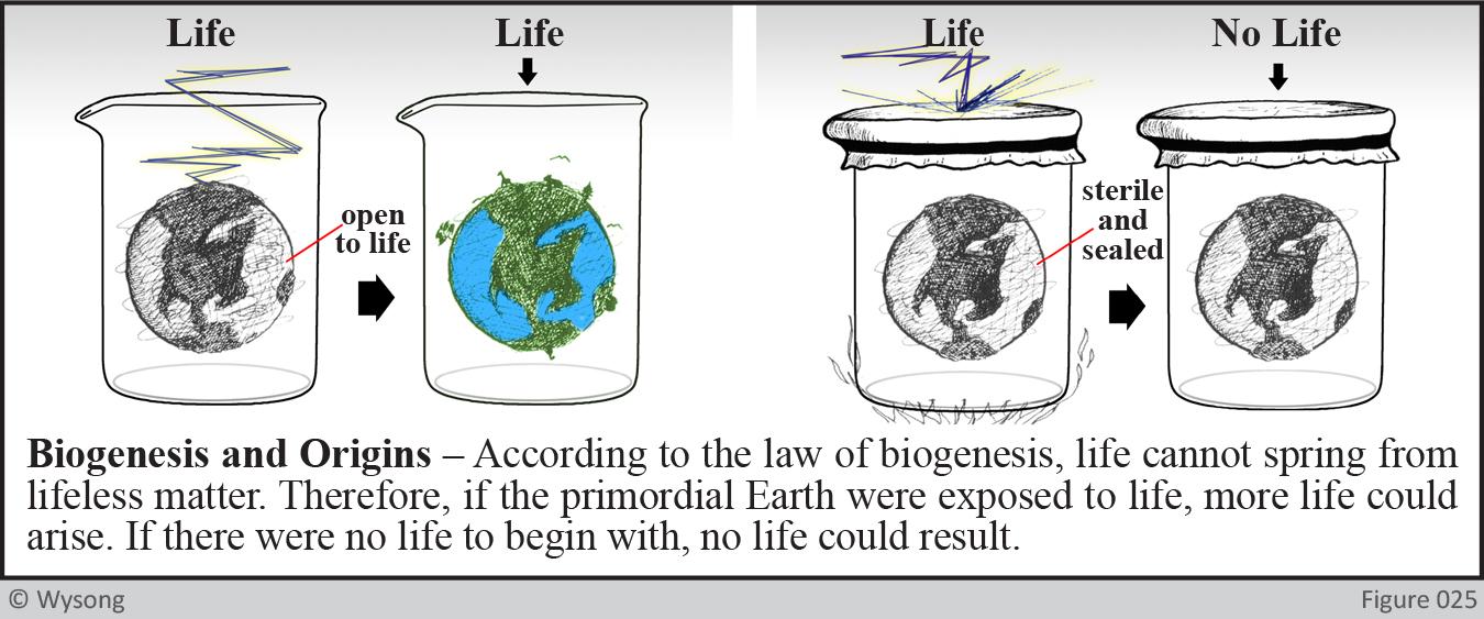 Biogenesis and origins