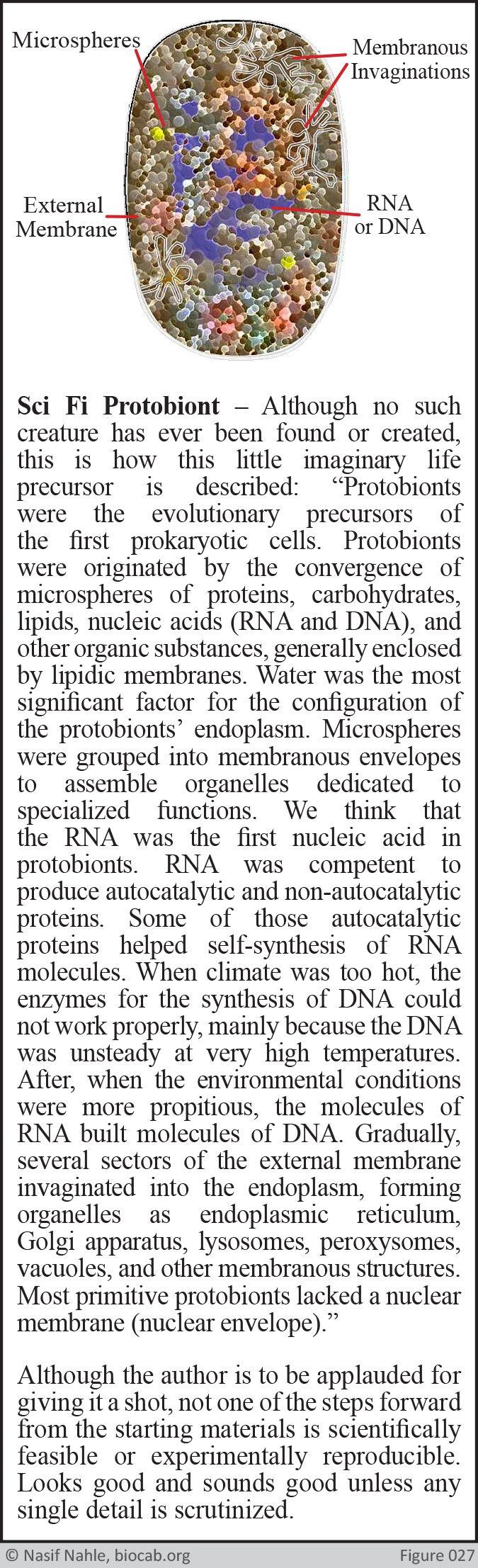 Sci Fi Protobiont