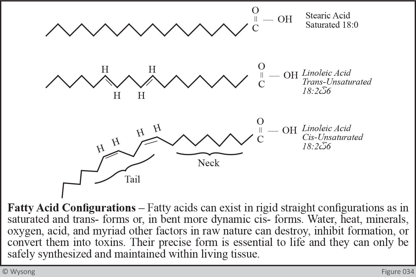 Fatty Acid Configurations