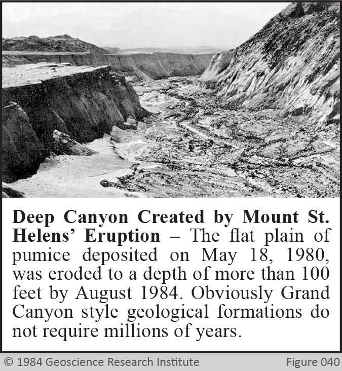 Mount St Helens Canyon