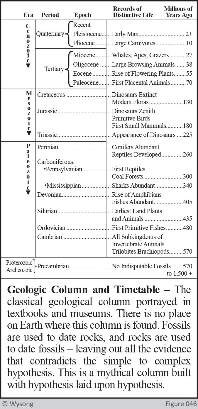 Geologic Column and Timetable