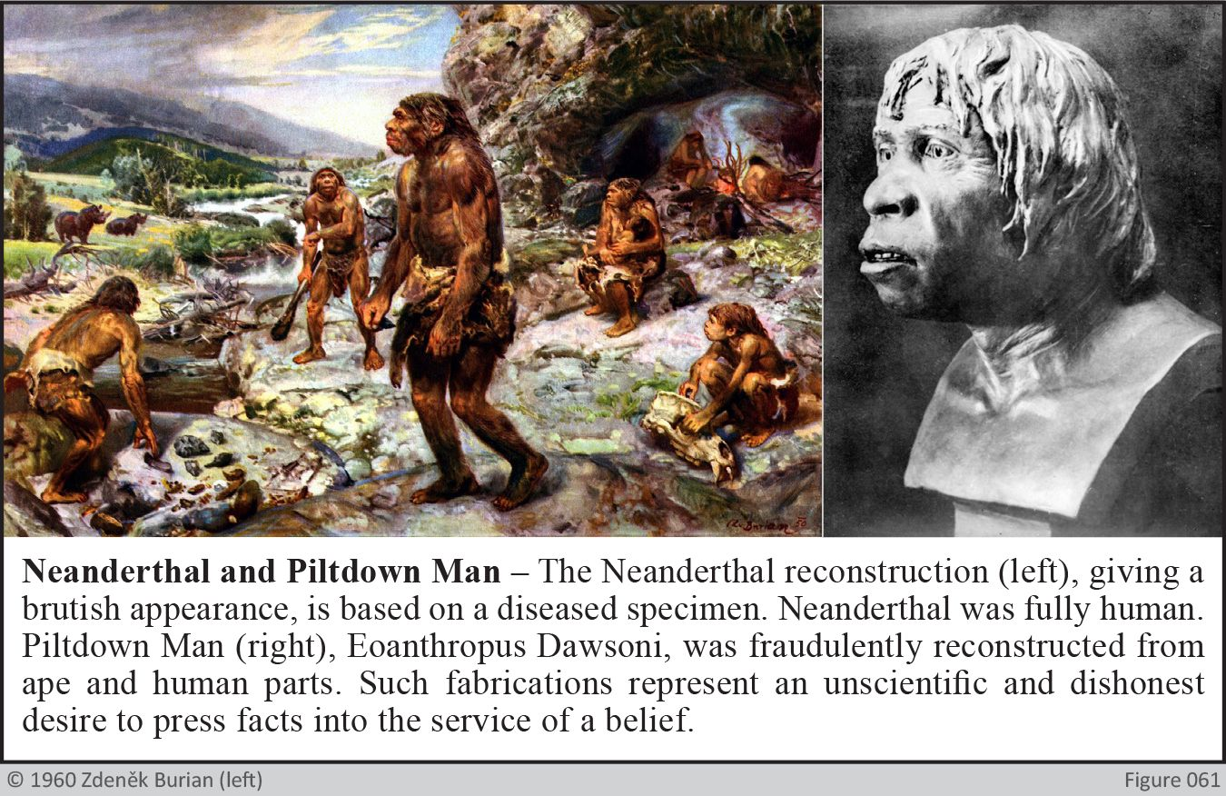Neanderthal and Piltdown Man