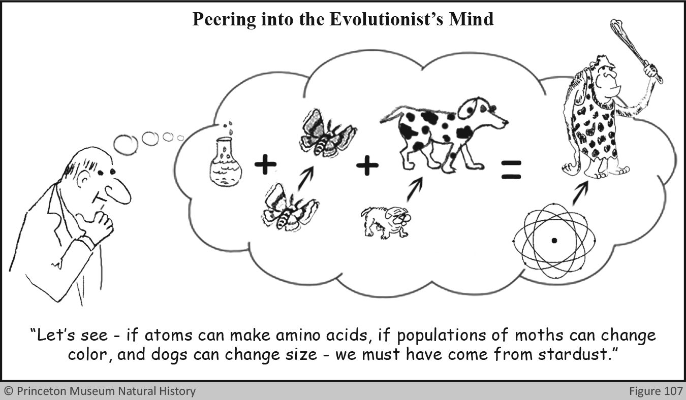 Evolutionists Mind