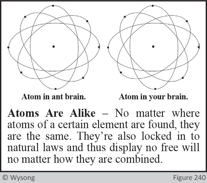 Atoms are Alike