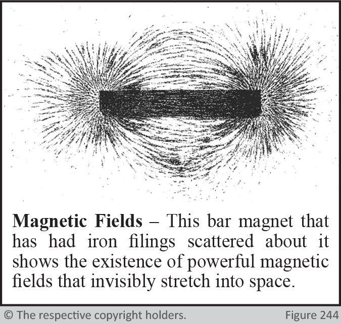 Magnetic Feilds