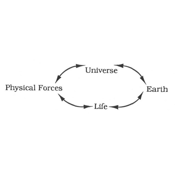 Universe Earth Life Force