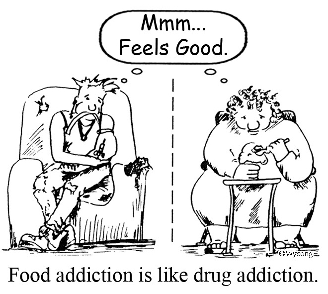Food vs Drug Addiction