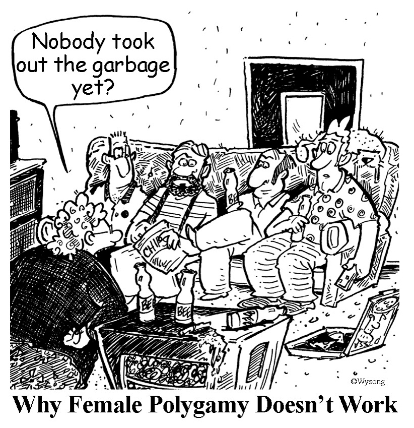 Female Polygamy