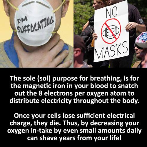 no-masks