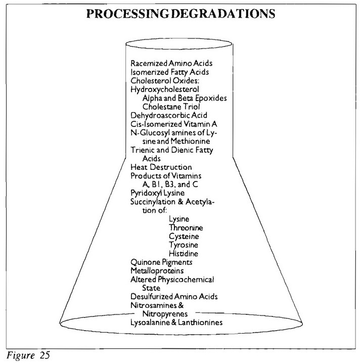 Processing Degradations