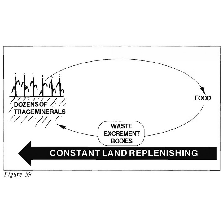 Constant Land Replenishing