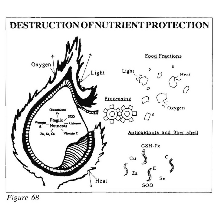 Destruction of Nutrients Protection