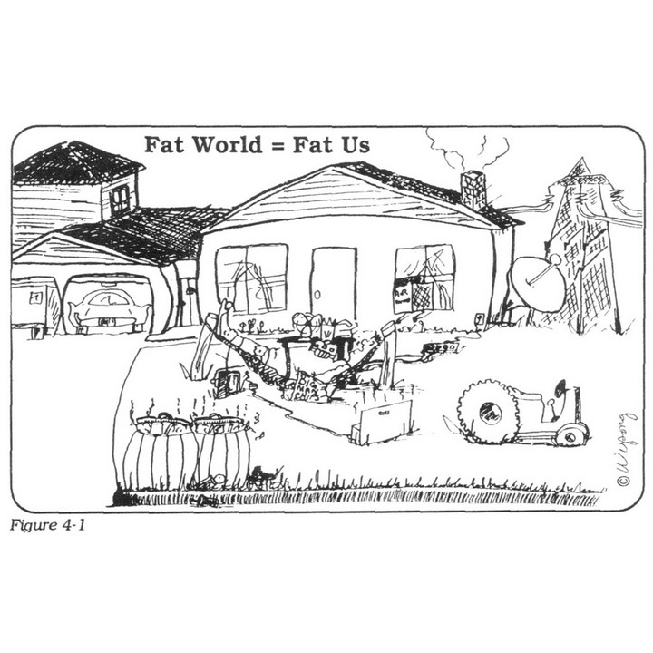 Fat World Fat Us