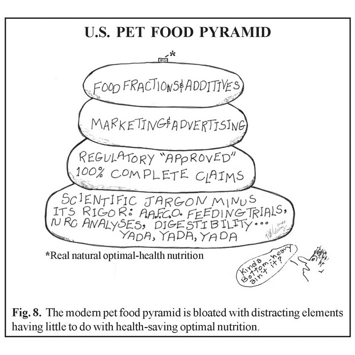 Us Pet Food Pyramid