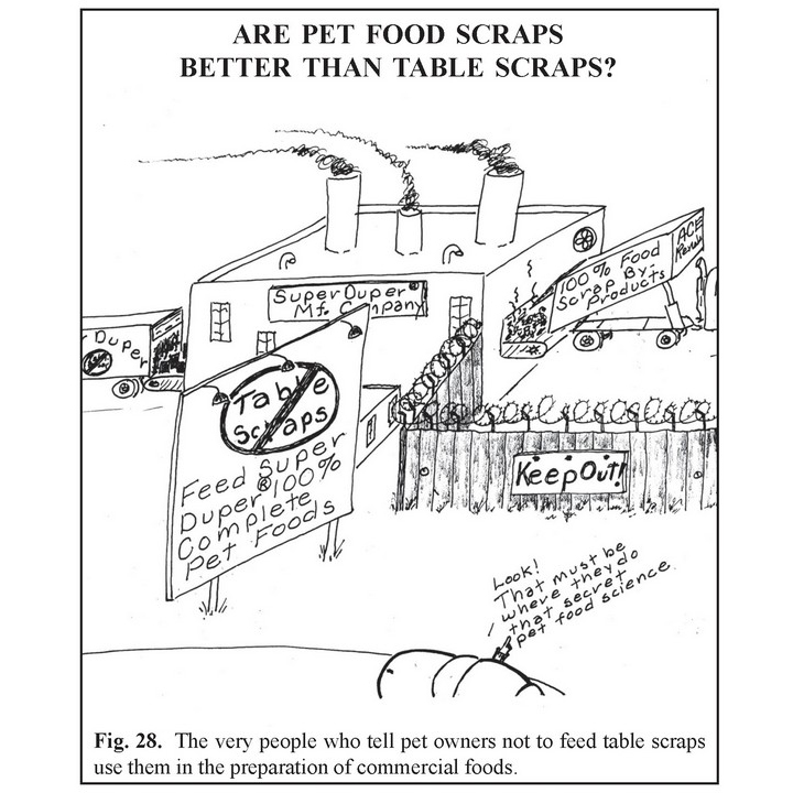 Pet Food vs Table Scraps