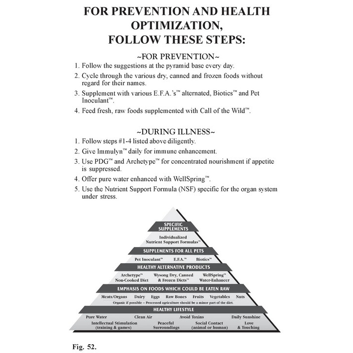 Prevention and Health Optimization